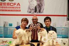 第21届亚洲宠物展览会